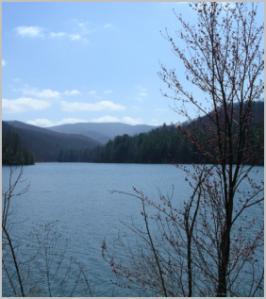 Switzer Lake