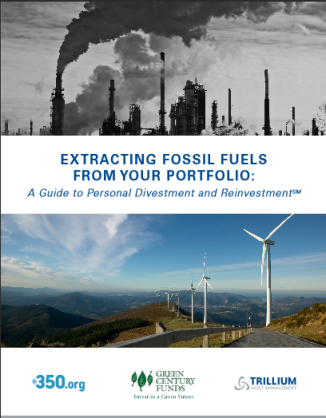 Click on this image to download the 28 page divestment guide.