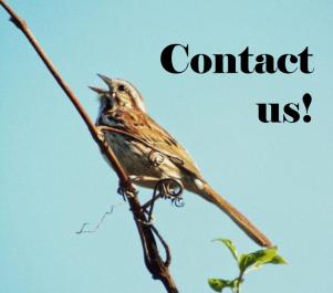 contactbird