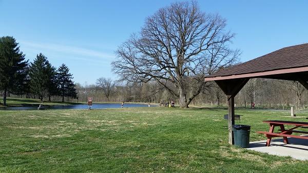 picnicsite.cs
